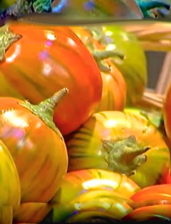 melanzana rossa di Rotonda